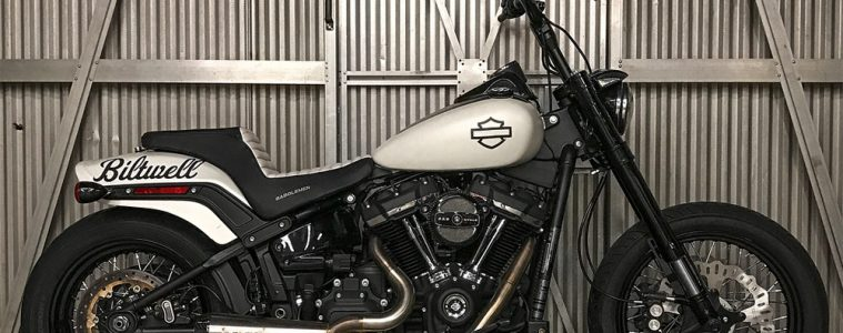 softail street bob 2018 custom