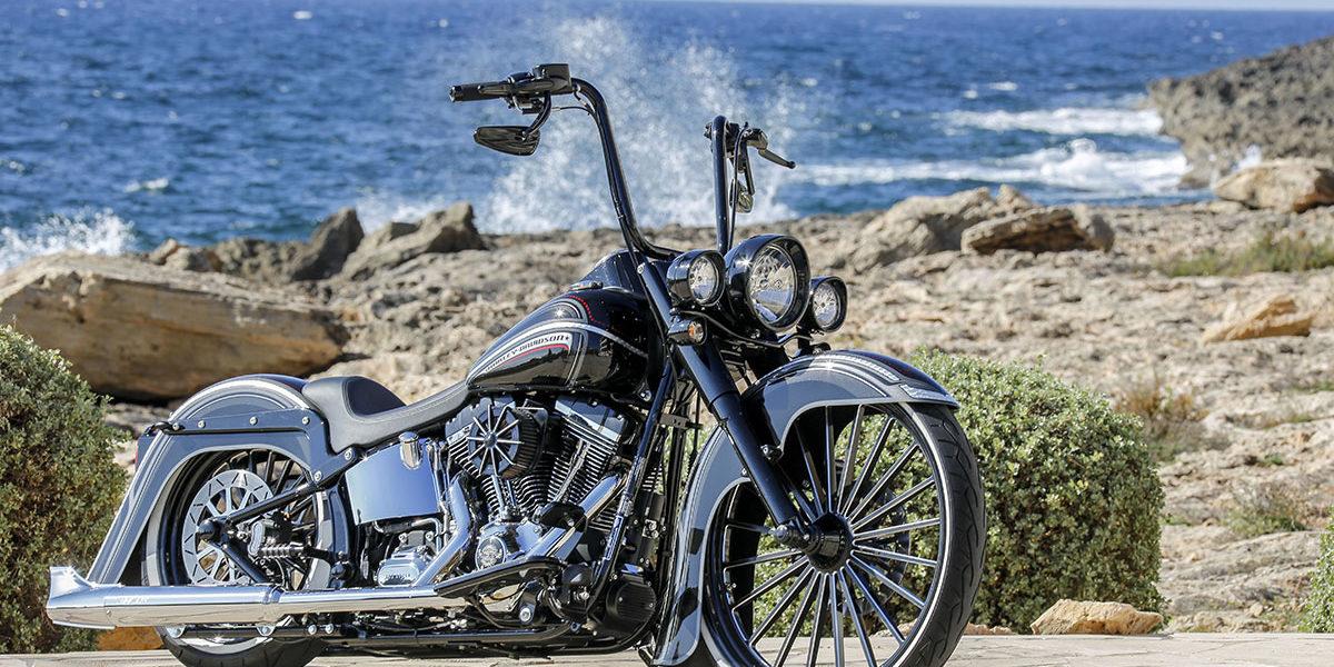 Harley-Davidson Softail 03 TC Rick's