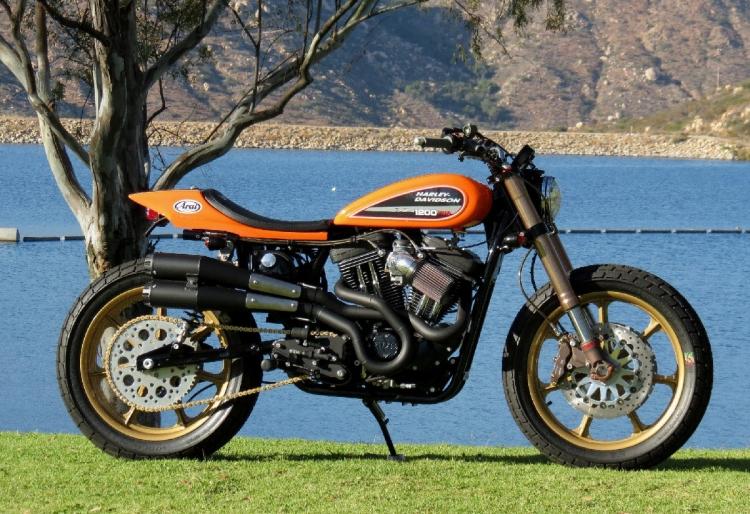 Harley-Davidson 1200 XR Mule Motorcycles