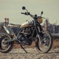 Suzuki DR 800 scrambler